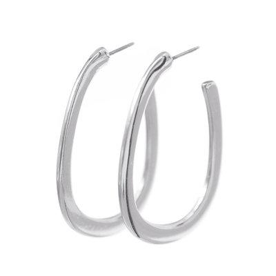 Earrings silver treasure